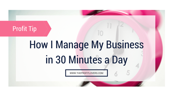 How I manage my business in 30 minutes per day blog